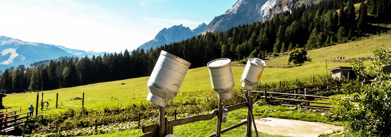 Milchkannen, Alm © Gina Sanders / Fotolia